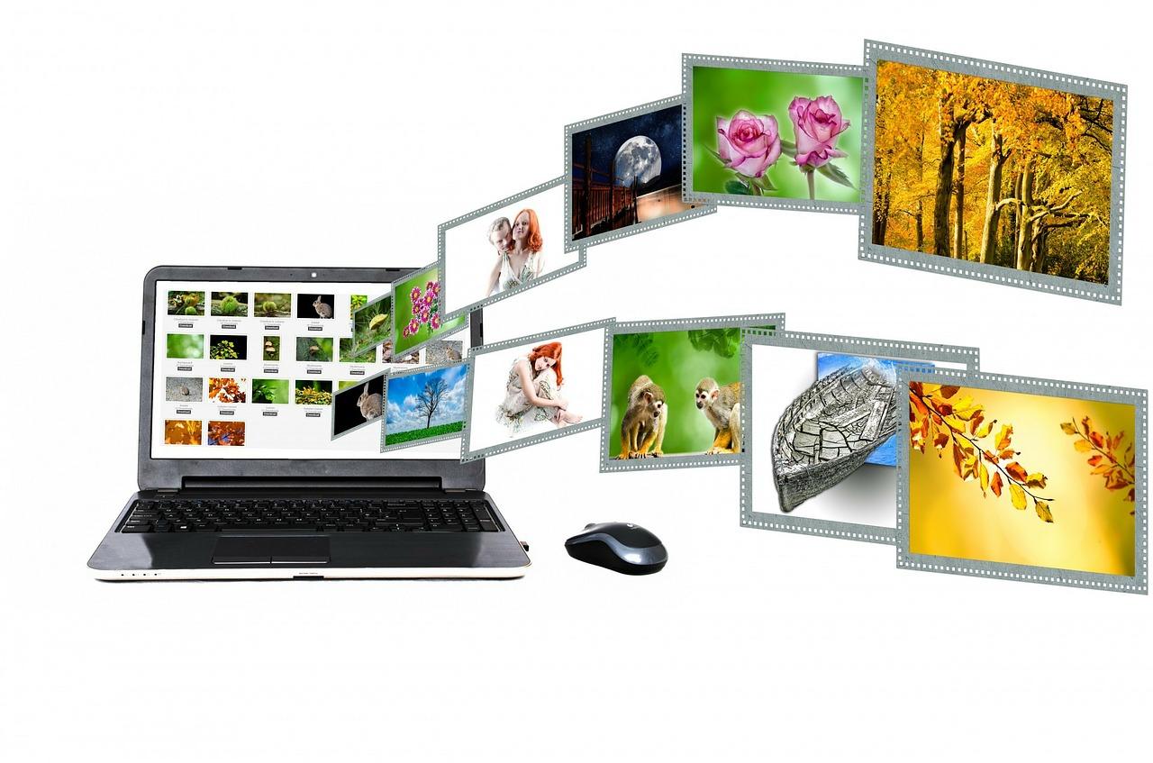 différence médias sociaux et réseaux sociaux